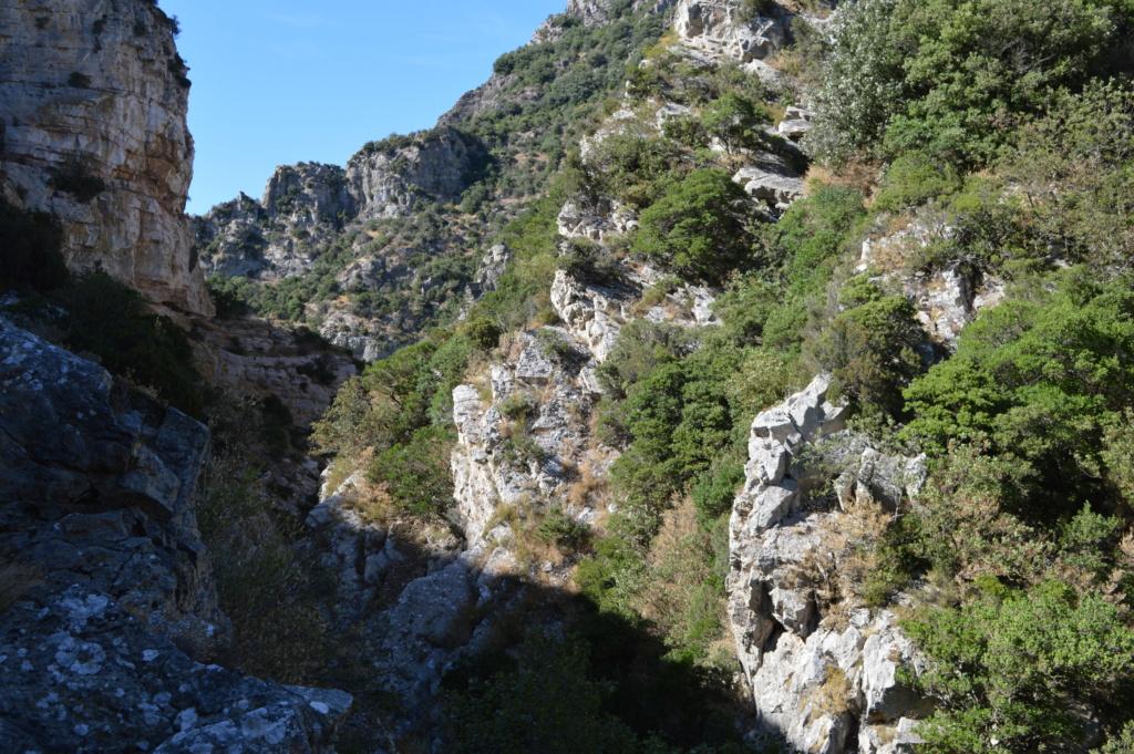 [Autres voyages/France] Balade dans les Hautes Corbières Dsc_0736