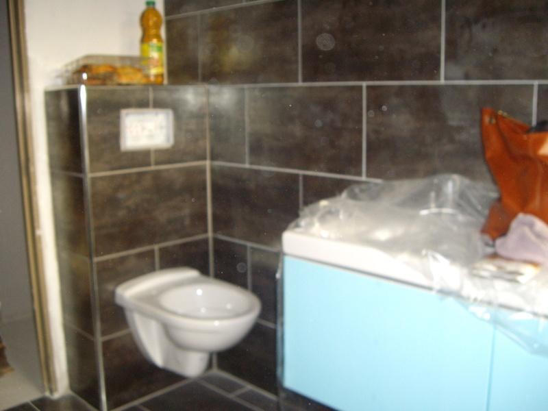 peinture pour ma salle de bain Img_2512
