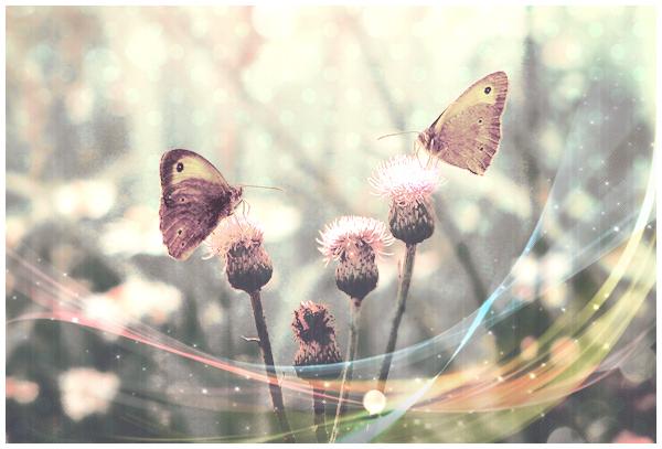 משחק מרוץ שליחים בסגנון עיצובים :) Flower10