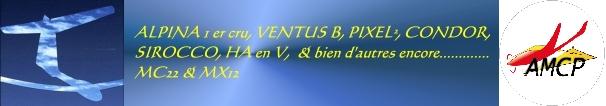 Hélico vs lamborgini Signat11