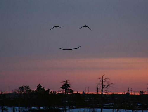 Un sourire par mois ! Sourir11