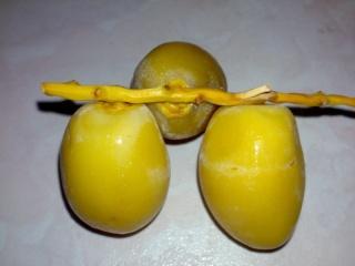 buah kurma fresh...... Buahku11