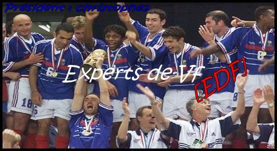 Les Experts de vF