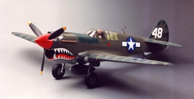 Curtiss P-40 - Página 2 B_wh_v11