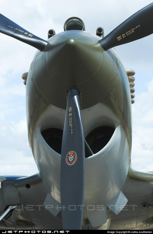 Curtiss P-40 - Página 2 Dedede10