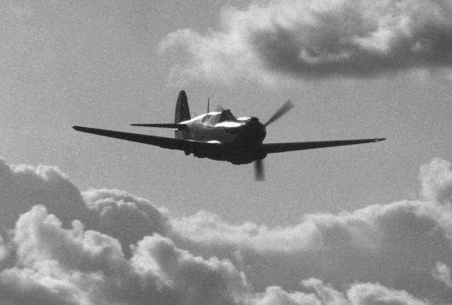 Curtiss P-40 - Página 2 Earlym10