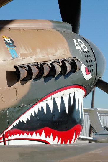 Curtiss P-40 - Página 2 Fc07b910