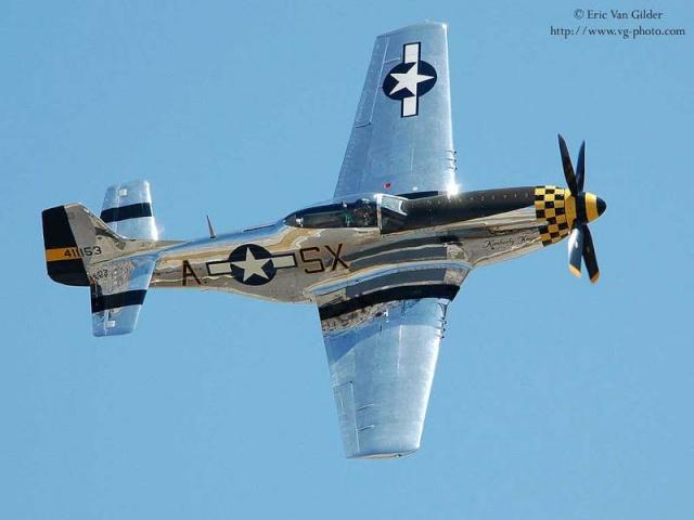 Curtiss P-40 - Página 2 Mustan10