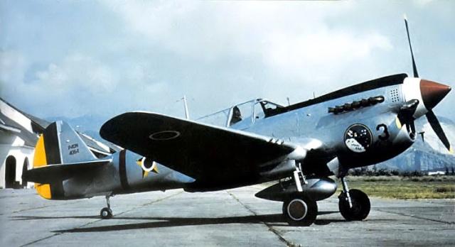 Curtiss P-40 - Página 2 P4411