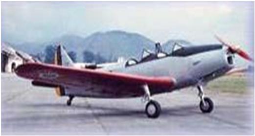 O Ás da Aviação Alemã na Segunda Guerra Mundial que Trabalhou em Natal Sem_ta27