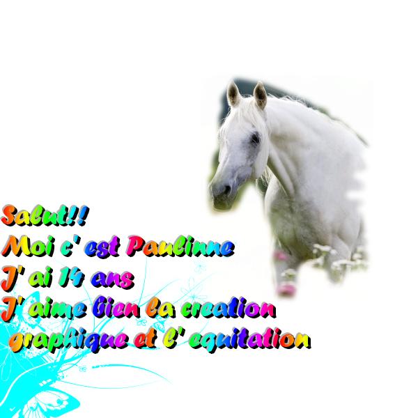 Paulinette Sans_t15