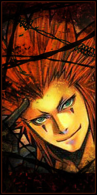 Axel Heartless