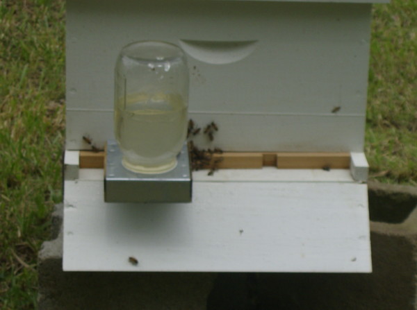 checked the new hives yesterday 05_10_12