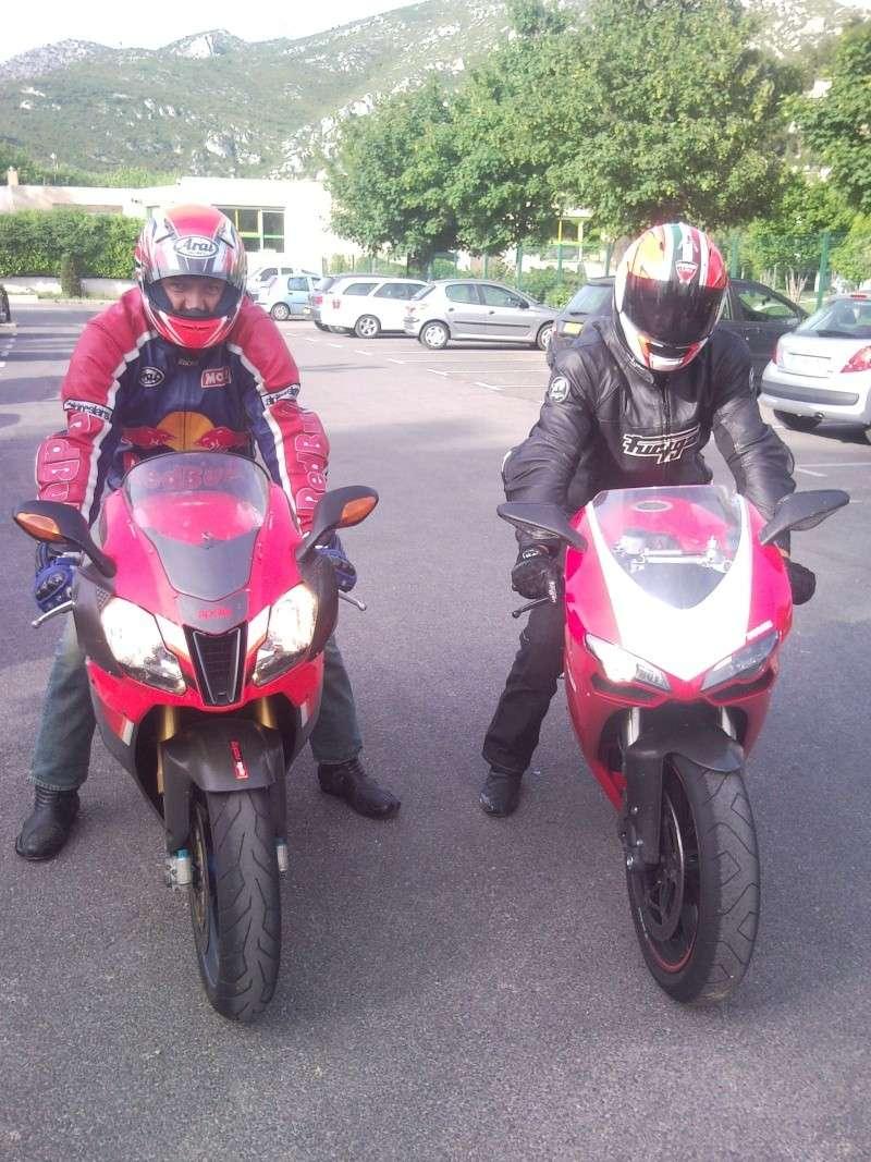 Balade imprevue du cote du Castellet....Les deux mousquetaires... 08311