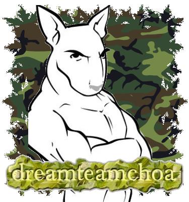 DreamTeamChoa