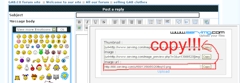 selling GAB clothes - Page 2 Fda10