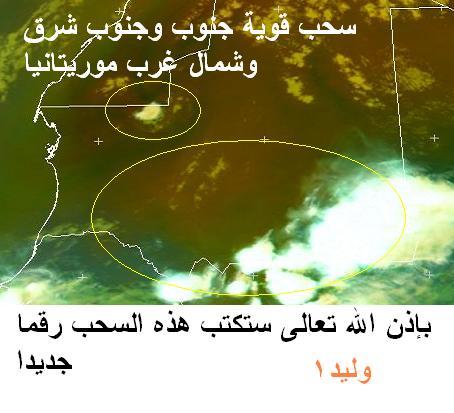 المتابعة اليومية للطقس في العالم العربي من 16 / 8 / وحتى 19 / 8 / 2009 م - صفحة 7 1115
