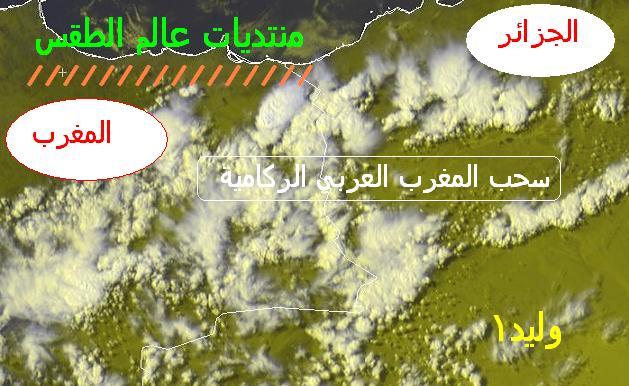 المتابعة اليومية للطقس في العالم العربي من 4 / 8 / وحتى 6 / 8 / 2009 م - صفحة 2 1210