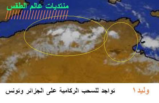 المتابعة اليومية للطقس في العالم العربي من 13 / 8 / وحتى 15 / 8 / 2009 م - صفحة 3 2214