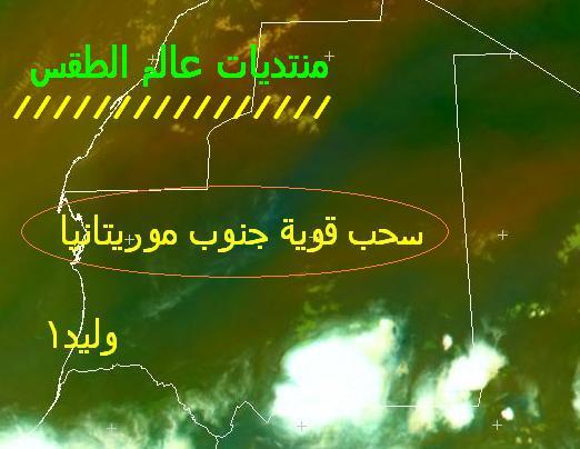 المتابعة اليومية للطقس في العالم العربي من 4 / 8 / وحتى 6 / 8 / 2009 م - صفحة 2 2410