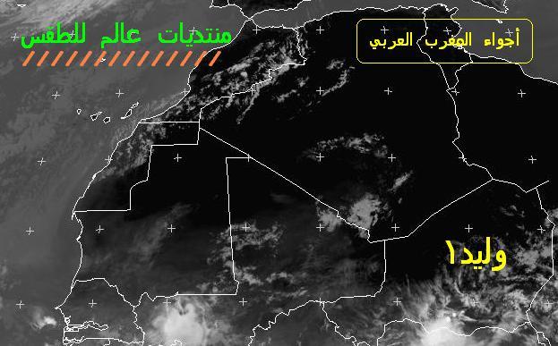 المتابعة اليومية للطقس في العالم العربي من 4 / 8 / وحتى 6 / 8 / 2009 م - صفحة 2 4410