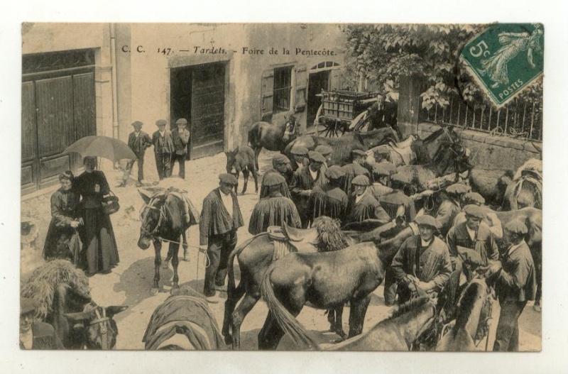 Foire  aux Mules  et aux Ânes  Lundi de Pentecôte: lundi 25 mai 2010 046310