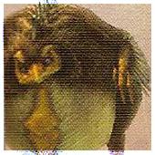 Monstres du Désert [En Cours] Ff12_c10