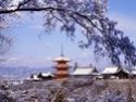 Фото Японии 09145410