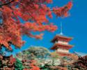 Фото Японии 12474610