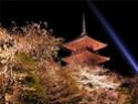 Фото Японии Ac728310