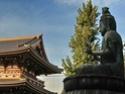 Фото Японии T01110