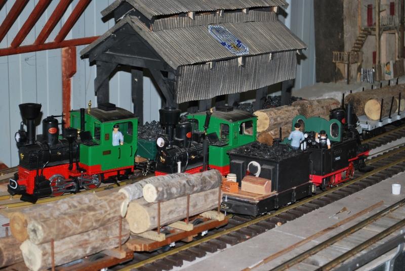 New photos of Sandbar and Mudcrab railways Trains10