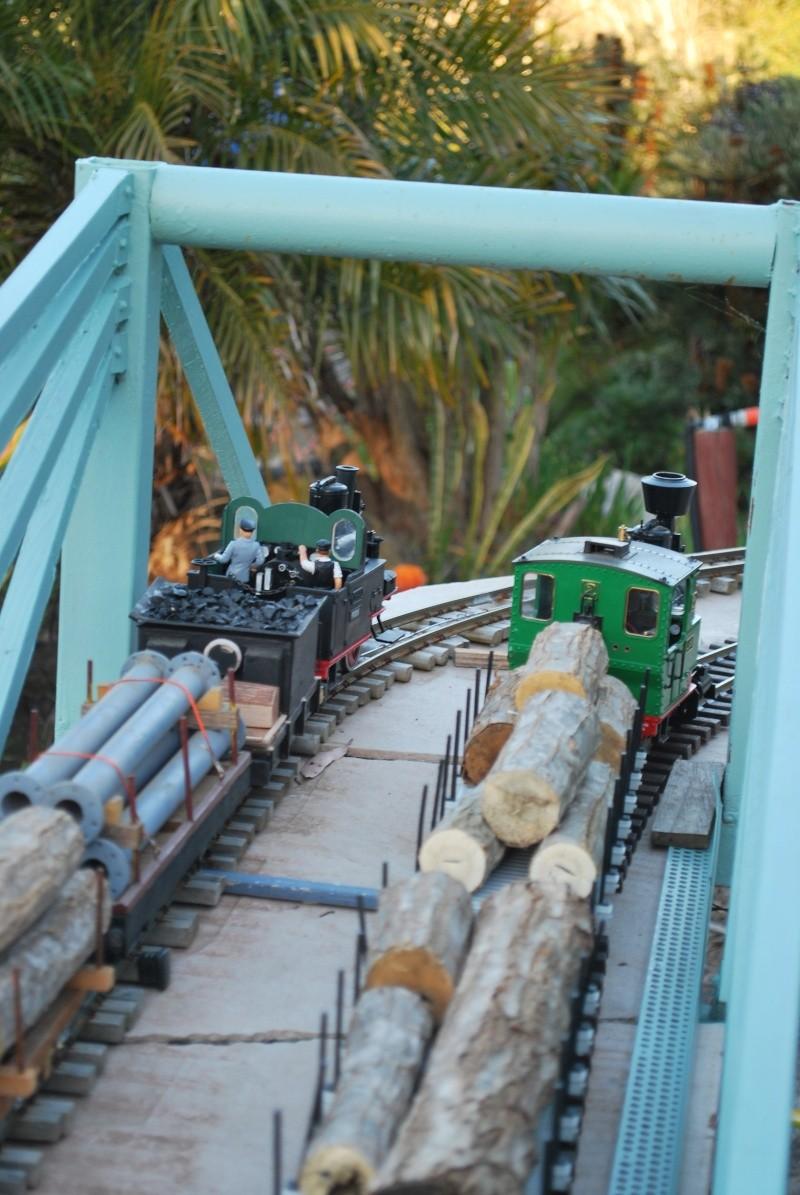New photos of Sandbar and Mudcrab railways Trains11
