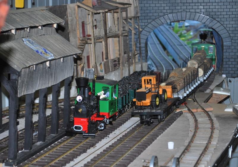 New photos of Sandbar and Mudcrab railways Trains13