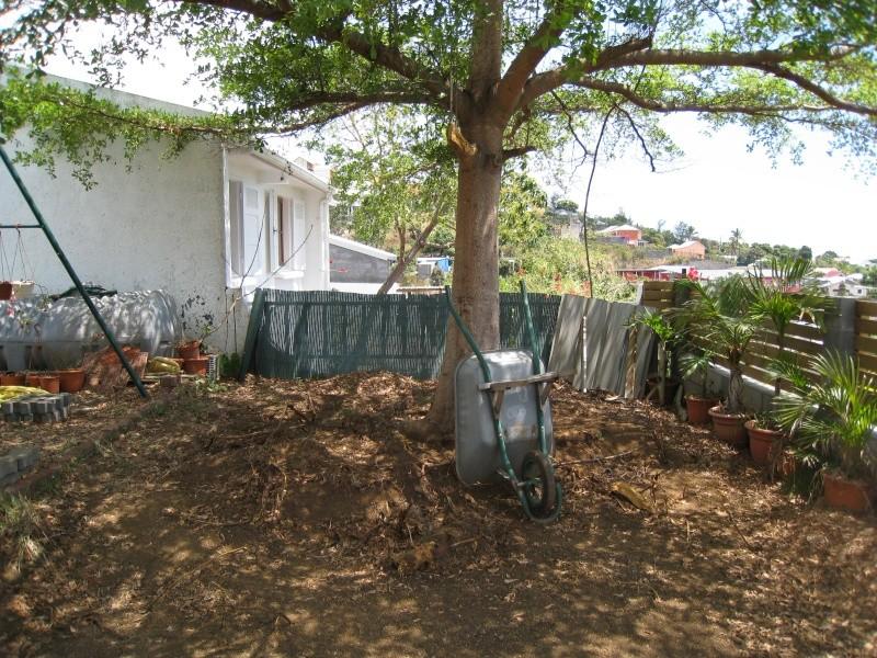 Aménagement du jardin conseils bienvenus !!! Img_0311