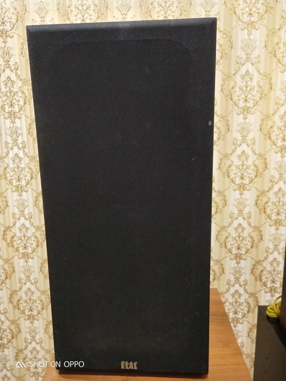 Elac Elx 8070 Speaker (SOLD) Img20127