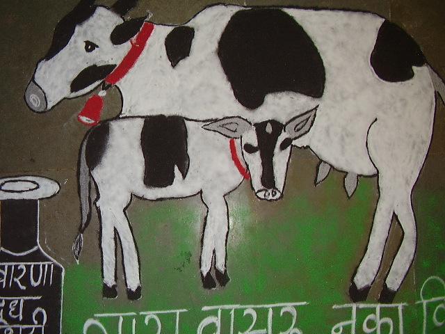 Indian Cow Art ! P1230410