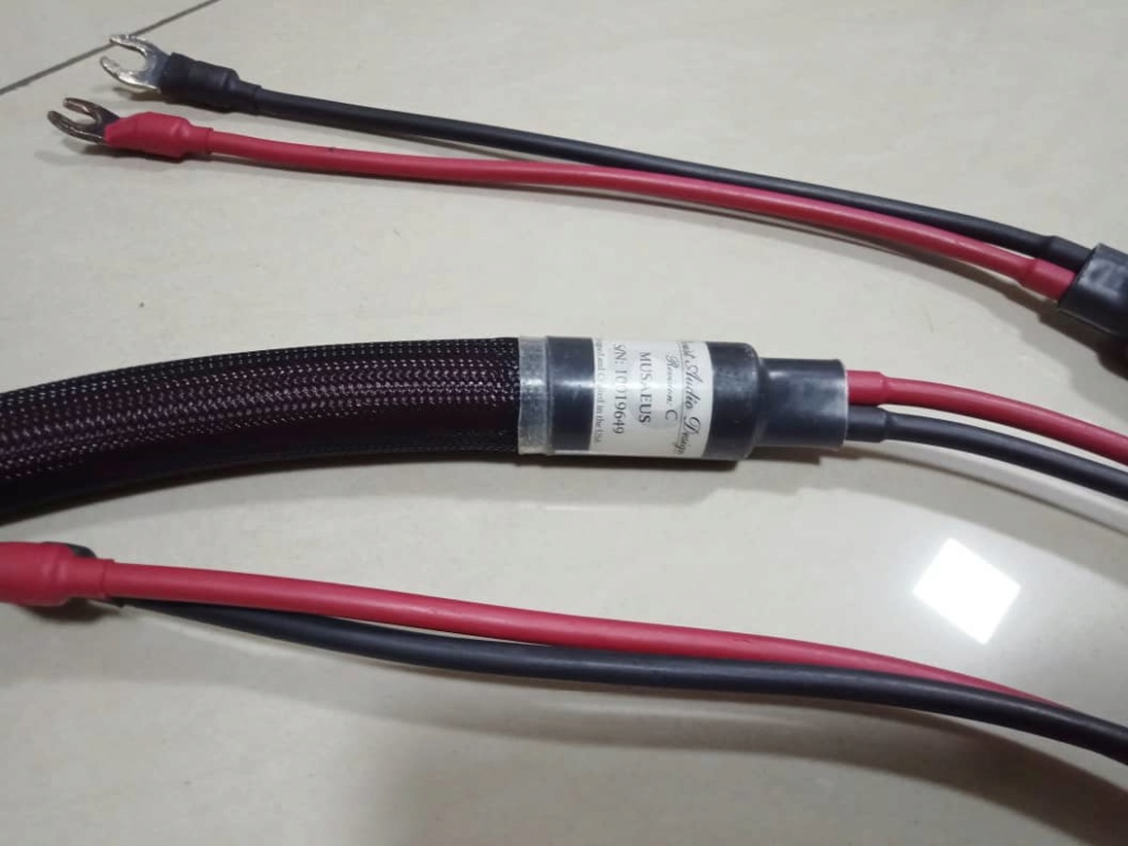 Purist Audio Design Musaeus Rev. C Speaker Cables - 3m pair A318