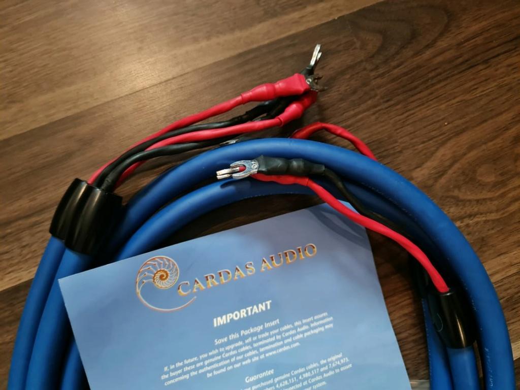 Speaker Cables: Cardas Clear, Cardas Clear Light, Shunyata, Xindak, Merlin,  etc Cardas19