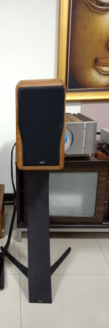 Chario Academy Sonnet Loudspeakers With Original Stands Chario13