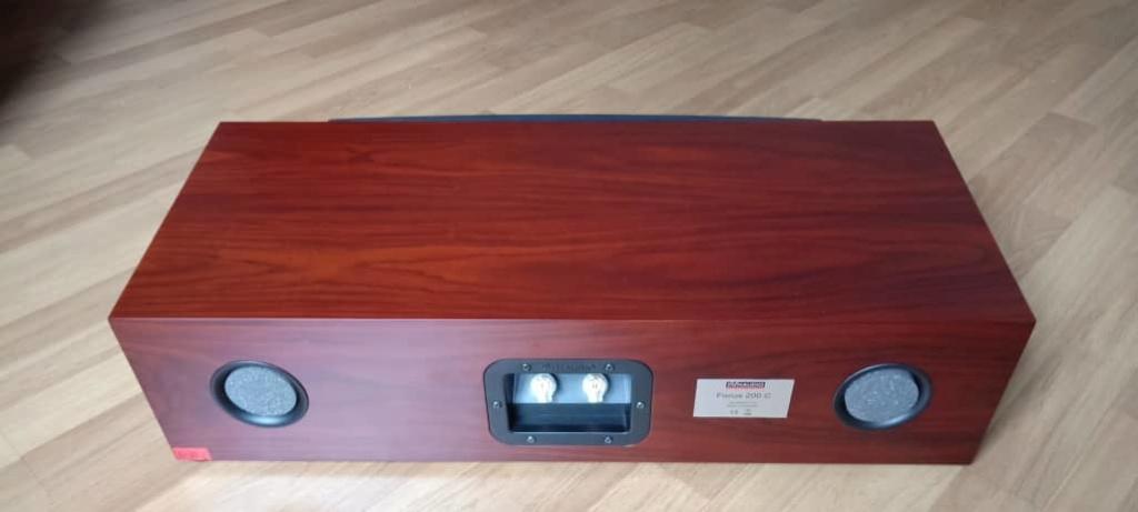 Dynaudio Focus 200C Center Channel Speaker D311