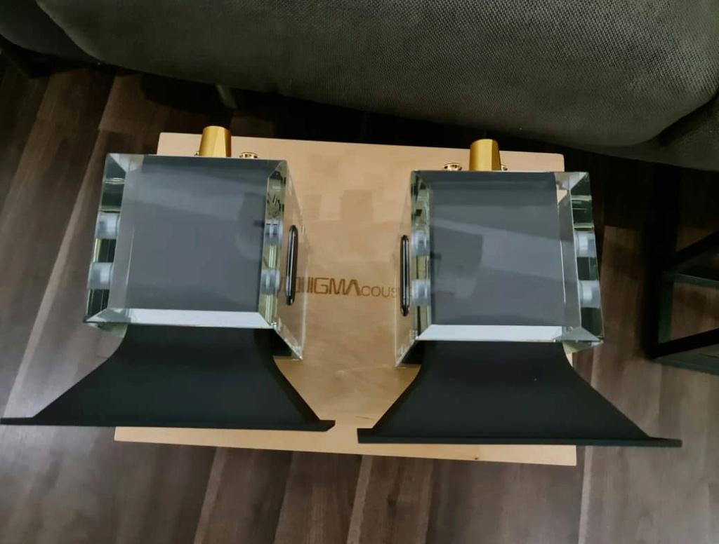 EnigmAcoustics Sopranino Electrostatic Super Tweeter Enigma15