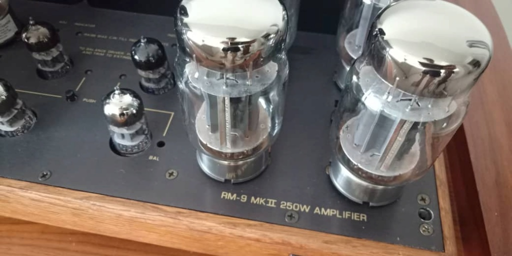 RARE Music Reference RM 9 MKII 250W Power Amplifier by Roger Modjeski R413