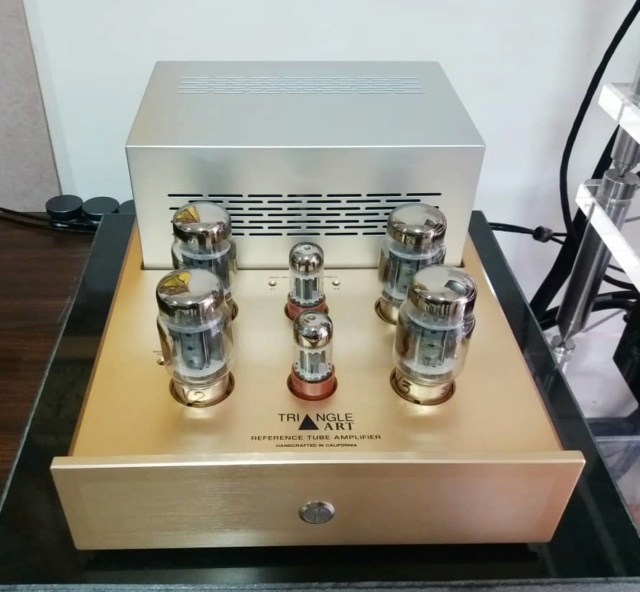 Triangle Art Reference Tube Monoblock Amplifiers Ta110
