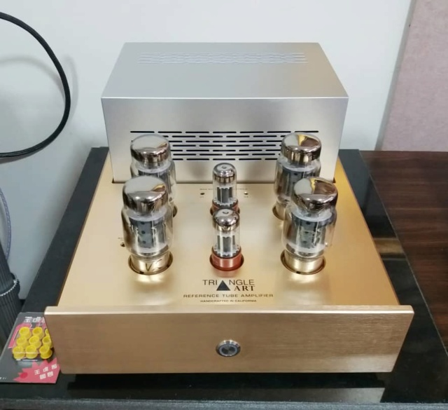 Triangle Art Reference Tube Monoblock Amplifiers Ta210