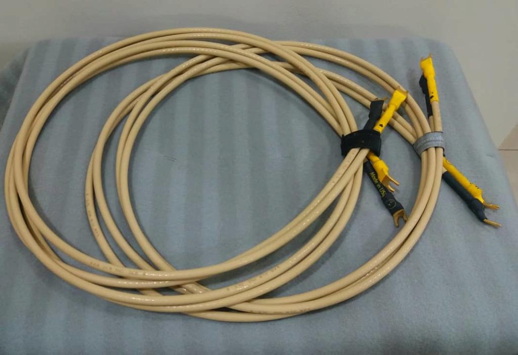 Van Den Hul SCS-6 6gauge Silver Clad Speaker Cables - 2m pair V110