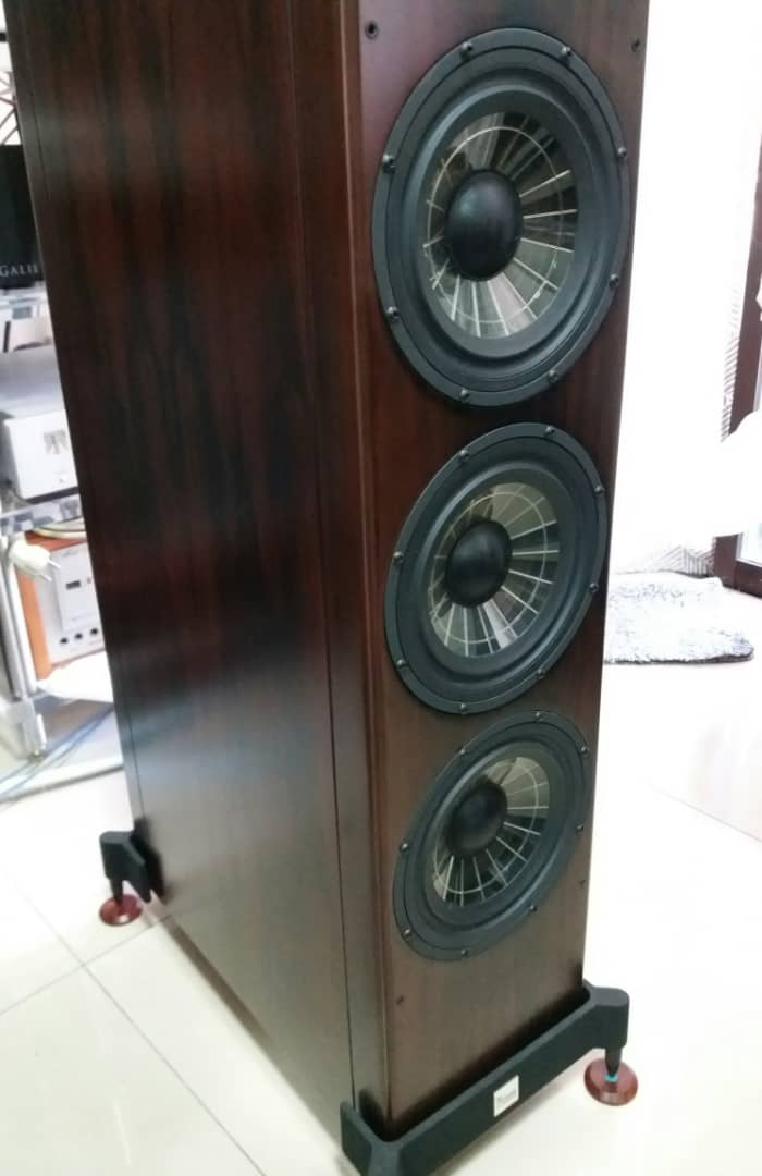 Vienna Acoustics Beethoven Concert Grand Speakers -Premium Rosewood Veneer Finishes  V510