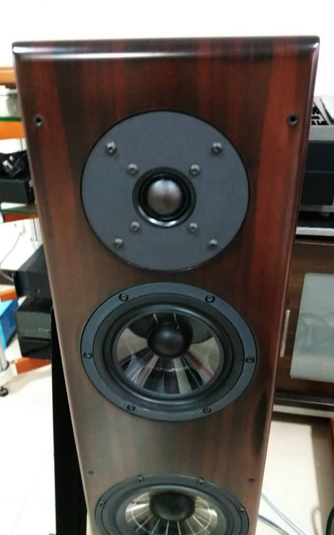 Vienna Acoustics Beethoven Concert Grand Speakers -Premium Rosewood Veneer Finishes  V610
