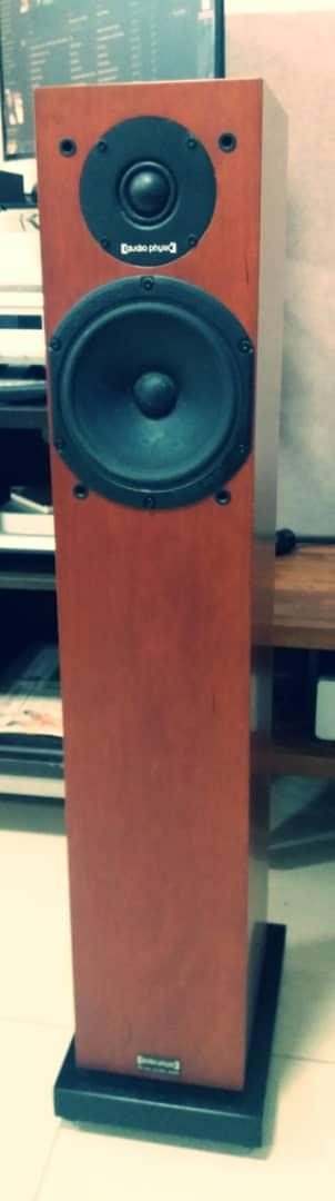 Audio Physic Yara II Evolution Speakers Yara310