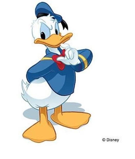 Un berceau Donald11